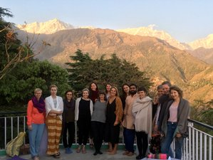 13 Days Yoga, Meditation & Cultural Journey in McLeod Ganj, Northern India