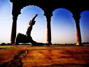 8 Days Yoga & Culture Exploration in Morocco