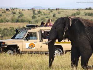 3 Days Camping Wildlife Safari in Kenya