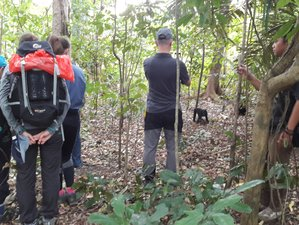 3 Days Tangkoko Wildlife Holidays in Indonesia