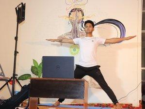 28 Day 200-Hr Self paced Multi-Style Online Yoga Teacher Training - Hatha, Ashtanga, Vinyasa Yoga