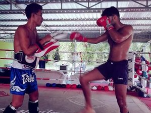 7 Day VIP Muay Thai Training in Krabi, Ao Nang