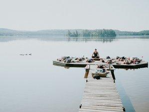 4 Day Habit Reset Retreat in Algonquin Park, Ontario
