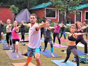 28 Day 300-Hour Multi Style Yoga Teacher Training in Ubud, Bali