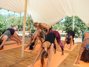 7 Days Front Beach Yoga and Meditation Retreat in Ibiza, Spain