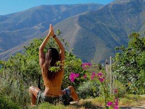 9 Days 85-Hour Elemental Pregnancy Yoga Teacher Training in Andalusia, Spain