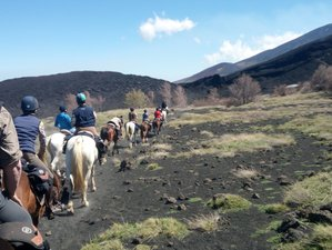 8 Day from Madonie to Etna Mountain Horse Riding Trip in Sicily, Italy