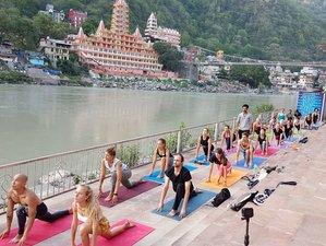 28 Days 200 Hours Ashtanga Vinyasa Flow Yoga Teacher Training in Rishikesh