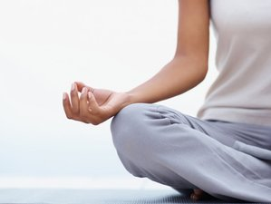 3 Day  Experience More Peace through Yoga, Meditation, and Mindfulness Retreat in Byron Bay