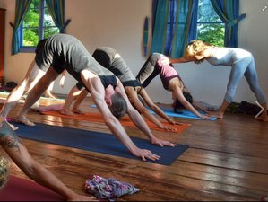 7 jours en stage de yoga ashtanga au Sri Lanka
