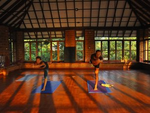 22 Days Meditation and Yoga Retreat in Gokarna, India