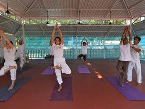 7 Tage Virachana Detox, Meditation, und Yoga Retreat Goa, Indien