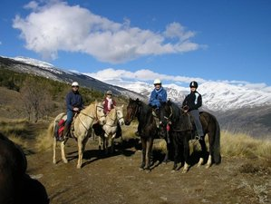 14 Days Exhilarating Working Ranch and Horse Riding Holiday in Andalusia, Spain