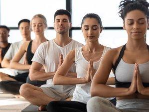 14 Day Luxury Juice Detox Retreat with Yoga, Meditation, and Wellness in Ayla, Aqaba