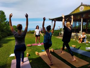 29 Day 200-Hour Embodied Flow™ Yoga Teacher Training Course in Golden Bay, New Zealand