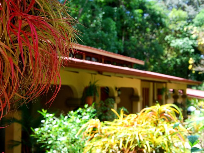 16 Days 200-Hour RYT Intensive Yoga Teacher Training Costa Rica