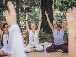 13 Day 100-Hour Yin Yoga Therapy Teacher Training Course on Fulidhoo, Vaavu Atoll
