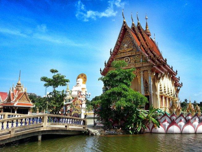 8 días de entrenamiento, movimiento, meditación y retiro de yoga en Ko Samui, Tailandia