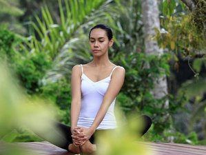 9 Days Blissful Meditation and Yoga Retreat in Bali