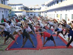 8 jours-50h en thérapie ayurvédique et formation de professeur de yoga à Rishikesh, Inde