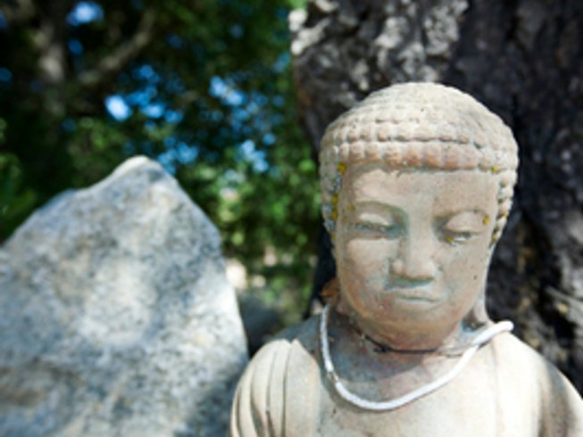 3 días paz, silencio y retiro de yoga en California