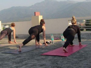 13 Tage Naturheilkunde Detox, Meditation und Yoga Retreat in Rishikesh, Indien