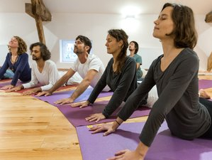 22-Day Traditional Non-Dual Hatha Yoga Immersion in Saint-Just-d'Avray, Beaujolais