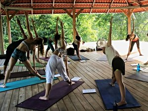 22 Days 200-Hour Yoga Teacher Training in Nicaragua