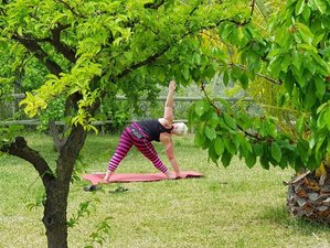 8 Day Nourishing Yoga, Meditation, and Mindfulness Retreat in Ibiza, Balearic Islands