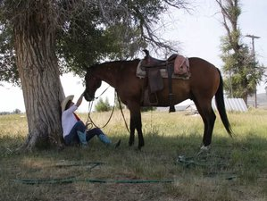 3 Day Amazing Horseback Riding Holiday and Ranch Experience in Lincoln County, Wyoming
