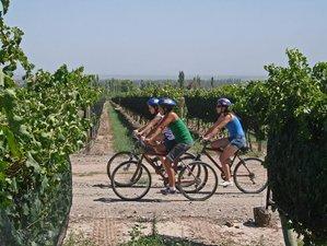 5 Days Prosecco Wine and E-Bike Tour in Veneto, Italy