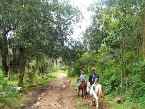 4 Day Hiking and Horse Riding Holiday in the Reserva Natural Miraflor