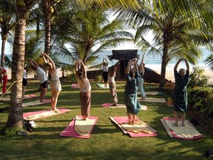 14 Days Holistic Tour and Yoga Retreat in Kerala, India