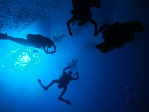6 Days Underwater Adventure Scuba-Diving Yoga Retreat in Gozo, Malta