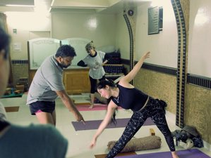25 Day 200 Hours Hatha Yoga Teacher Training in Dharmashala, Himachal Pradesh