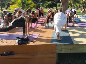 22 Day Advanced 300-Hour Yoga Teacher Training in Broward County, Florida