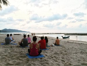 8 Days Meditation and Ashtanga Yoga Retreat Thailand