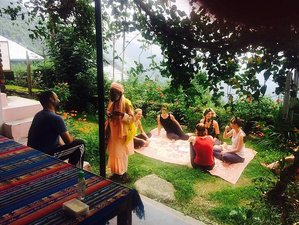 28 Days 200hr India Yoga Teacher Training in Dharamsala