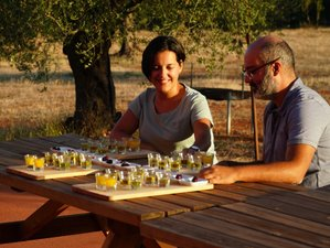5 Day Olive Immersion and Culinary Vacation in Laconia, Peloponnese