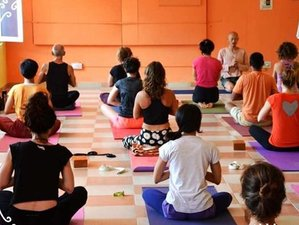 27 Days 200-Hour Multi-Style Yoga TTC in Dharamsala