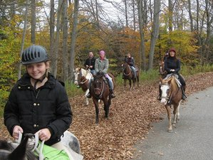 3 Days Horse Lovers Ranch Vacation in Otto, New York