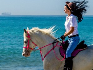 8 Day Camping and Horse Riding Holiday in Salalah, Dhofar