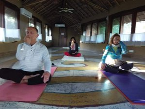 4-Daagse Detox, Meditatie en Yoga Retraite in Kerala, India