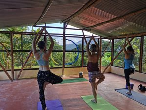 10 Day Costa Rican Naturopathic Detox Holiday with Yoga in Magical Arenal Rainforest