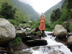 21 Tage Yoga Pilgerreise mit Ayurveda, Multi Aktive Kultur und Tollen Erlebnissen in Nordindien