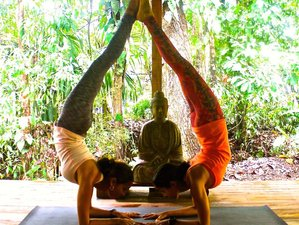 8 Days Freedom Yoga Retreat Costa Rica