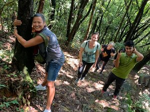 4 Day Hiking, Relaxation and Yoga Holiday in Kathmandu