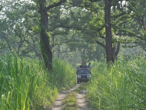 3 Days Jungle Safari in Chitwan National Park, Nepal