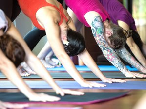 15 Days Yoga and Fitness Holiday in Koh Samui, Thailand