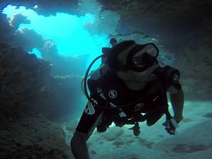 6 Day Down South Discover Diving and Surf Camp in Weligama and Kirinda, Sri Lanka